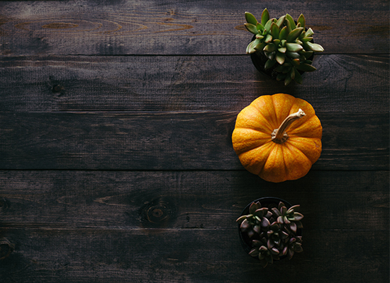 3 Simple Tips for Thanksgiving Dinner on a Budget